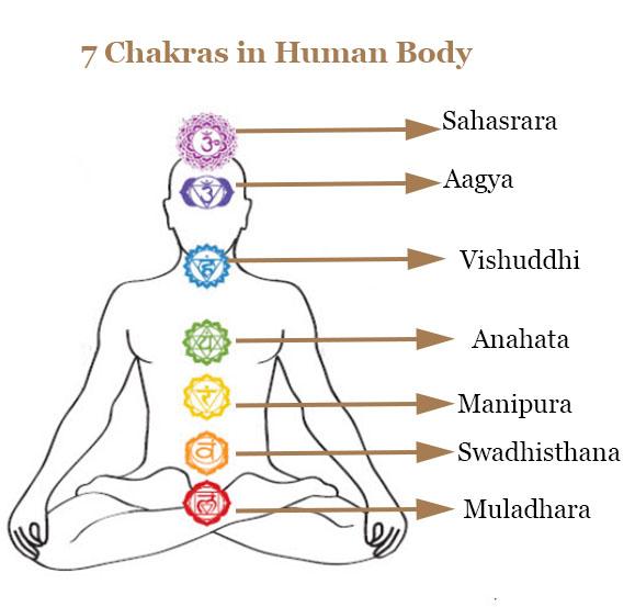 Chakra Meditation -Image of 7 Chakras in Human Body
