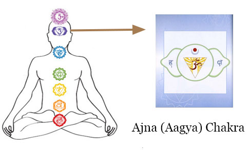 Chakra Meditation : Image of Aagya (Third Eye) Chakra