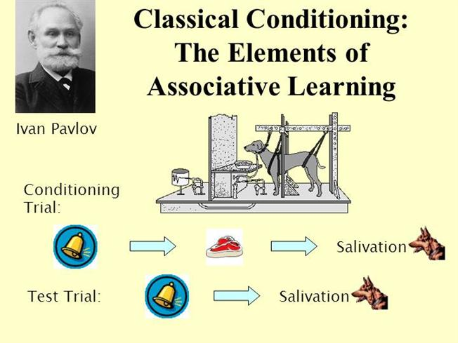 This breathing technique is based on the concept of Associative Learning invented by famous scientist Ivan Pavlov